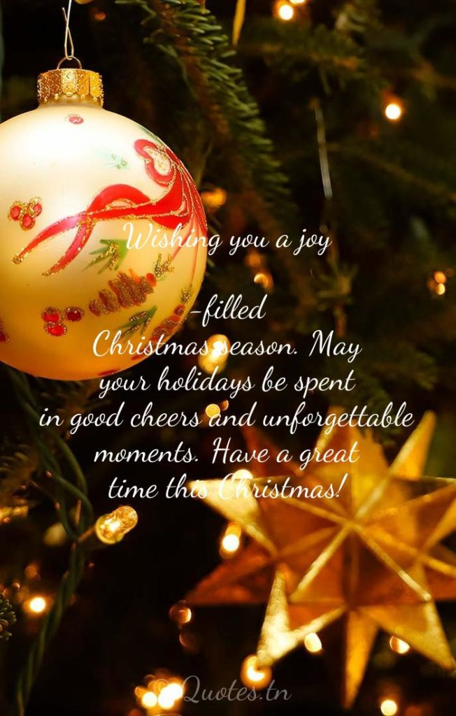 Wishing you a joy-filled Christmas season. May your holidays be spent in good cheers and unforgettable moments. Have a great time this Christmas! - Christmas Wishes by
