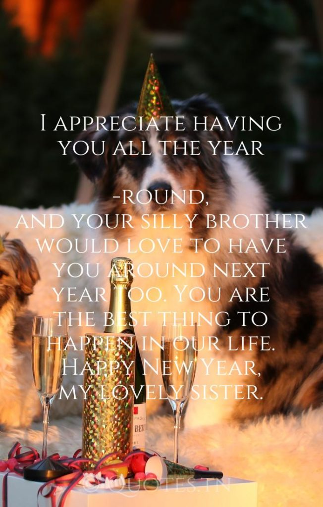 I appreciate having you all the year-round, and your silly brother would love to have you around next year too. You are the best thing to happen in our life. Happy New Year, my lovely sister. - New Year Wishes for Sister by